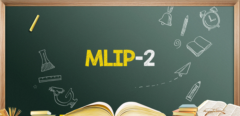 IGNOU Master in Library Science (MLIP-2) Final Year Project