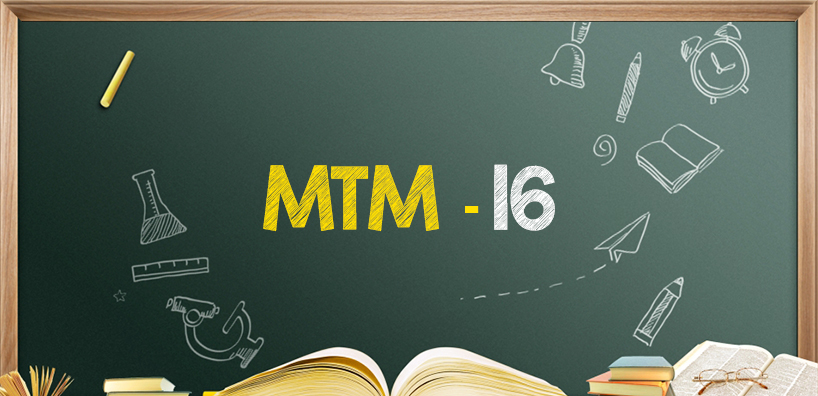 IGNOU Masters of Tourism Management Project (MTM-16)